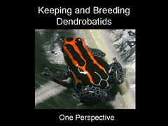 Keepening and Breeding Dendrobatids