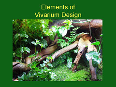 Elements of Vivarium Design