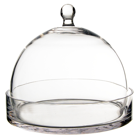 Glass Terrarium Glass Cloche 9