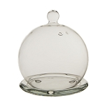 Glass Terrarium Mini Cloche 5