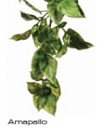 Exo-Terra Hanging Jungle Plant Amapallo - Large