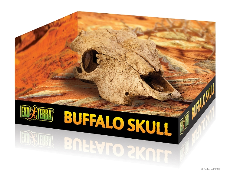 Exo-Terra Cattle Skull Hide