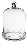 Glass Terrarium Glass Cloche 15