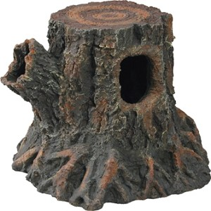 Stump Den - Medium