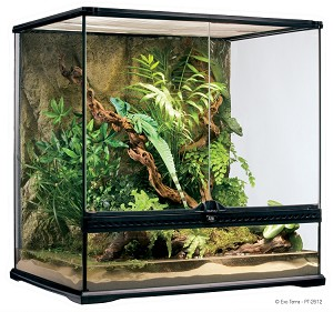 "Terrarium - Exo-Terra Open Front - Medium Tall 24"" x 18"" x 24"" (LOCAL OR SHOW PICKUP ONLY - NO SHIPPING!)"