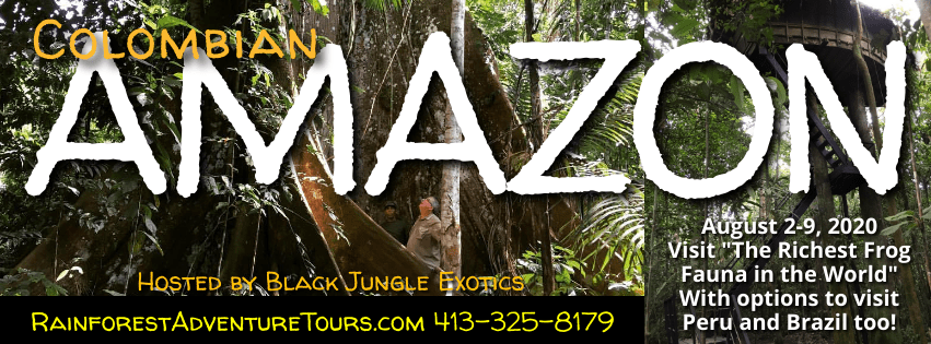 COLOMBIAN AMAZON Rainforest Adventure Tour ($100 DEPOSIT) - August 2-9, 2020