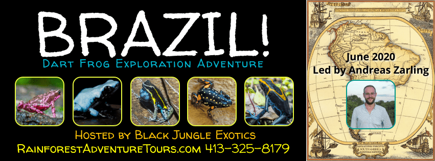 Brazil Dart Frog Exploration Adventure Tour 2020! ($100 Deposit)