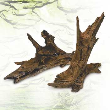 """Malaysian Driftwood - XS (3-5"""")"""