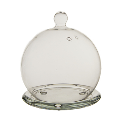 "Glass Terrarium Mini Cloche 5"""