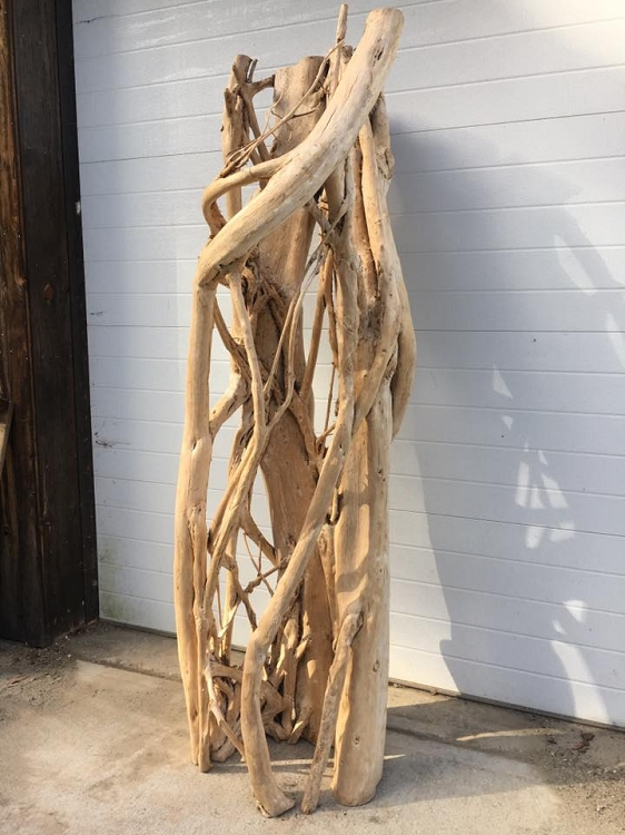 Strangler Fig Skeleton (6+ foot) - (Ask for Freight Quote)